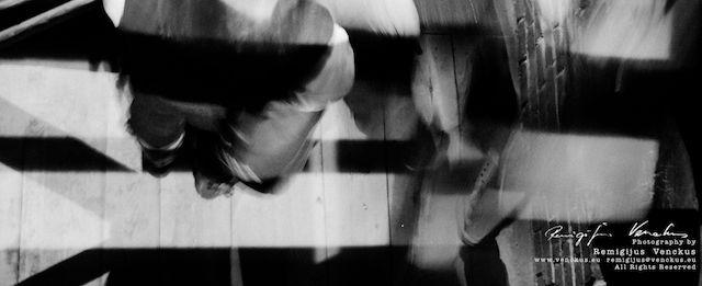 Krokuvos dienorastis -Neatpažintieji nr.1 2013 10 06 - 12