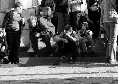 Krokuvos dienorastis -Veidai mieste nr.2 2013 10 06 - 12